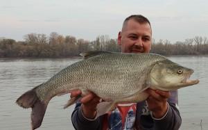 Dunai 6,60 kg Sure Catch 7 cm