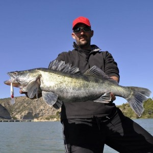 Rio Ebro Sure Catch-el